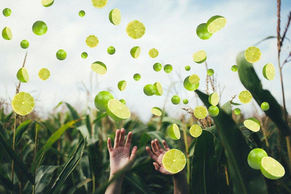 Mani e limoni.jpg
