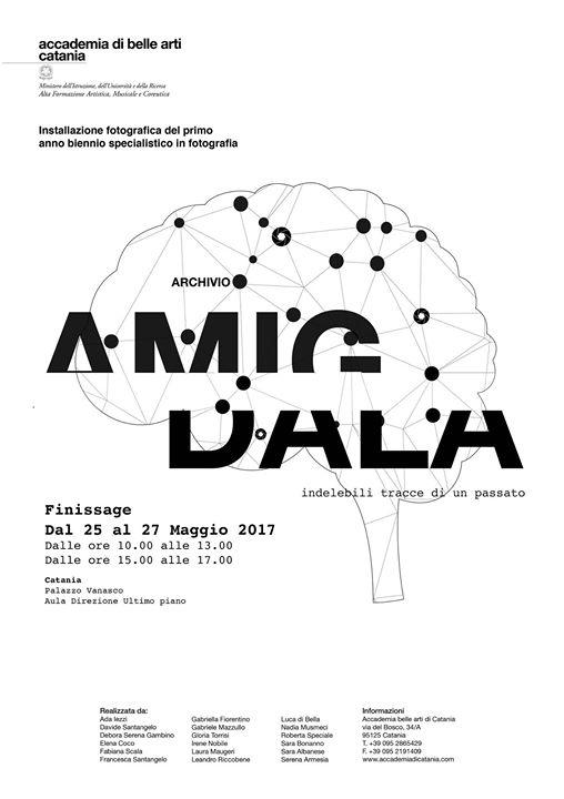 archivio amigdala.jpg