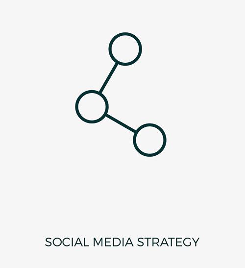 FLNRS / Social Media Strategy