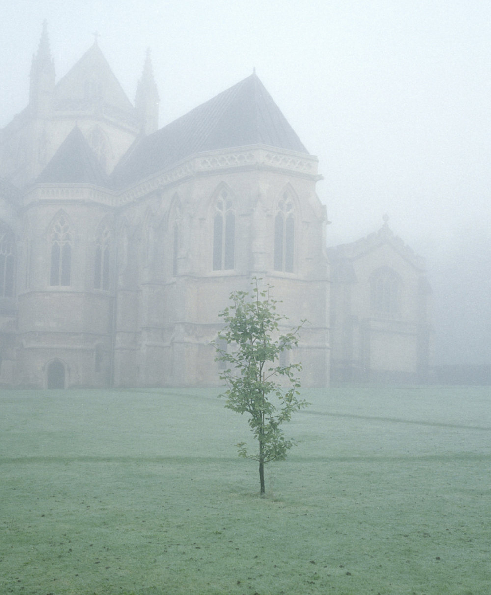 Fog before lauds, Downside Abbey 2015.