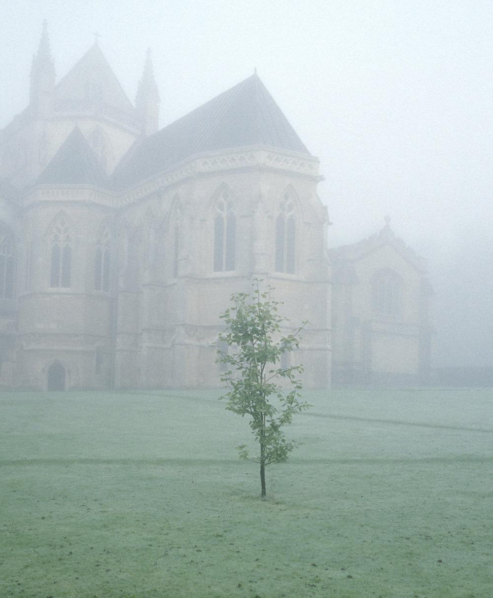 Fog before lauds, Downside Abbey 2015.