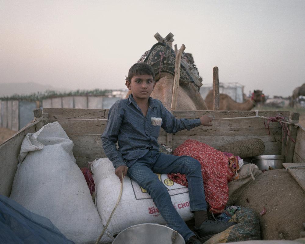 The Boy In The Cart, Pushkar 2016