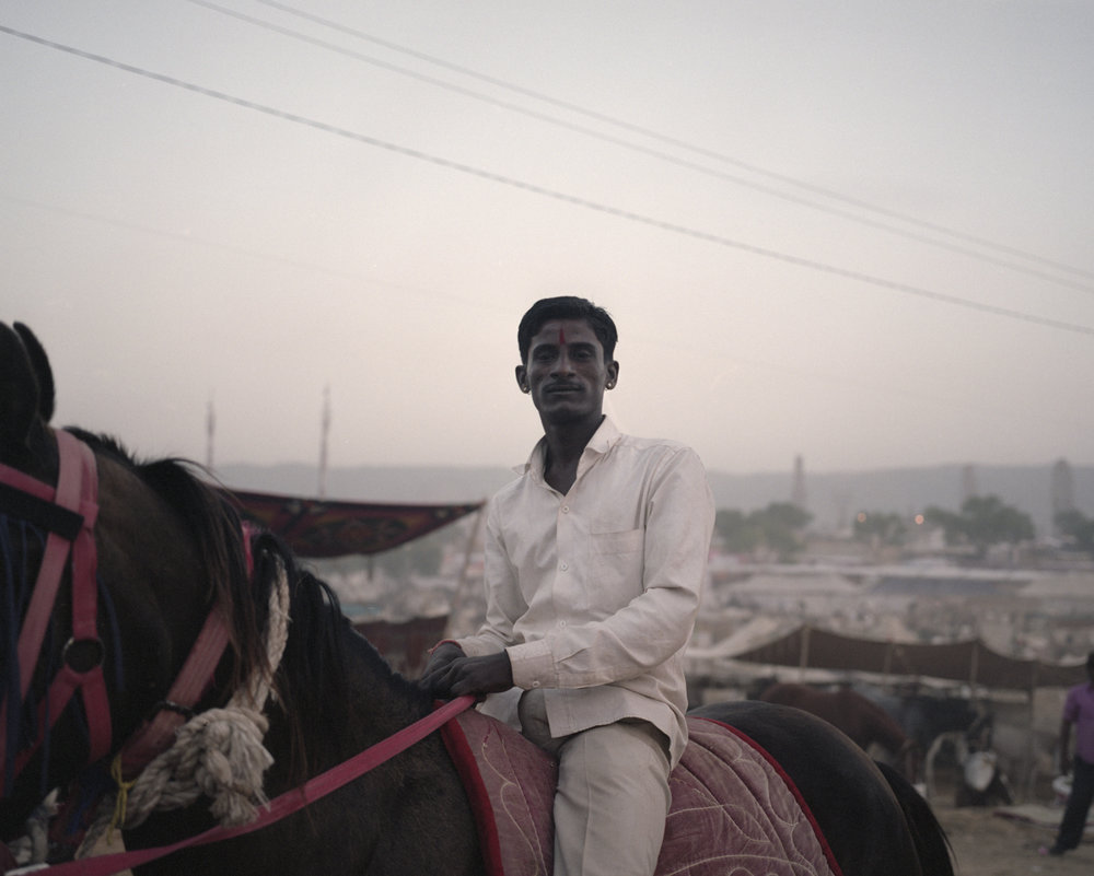 The Horse and The Rider, Pushkar 2016