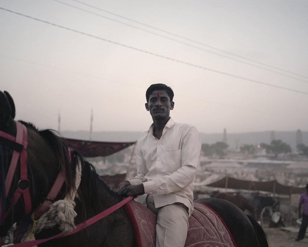 The Horse and The Rider, Pushkar 2016