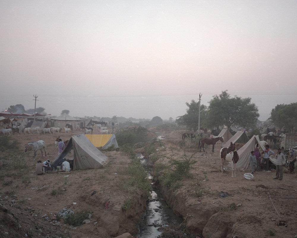 The Camp On The Stream, Pushkar 2016
