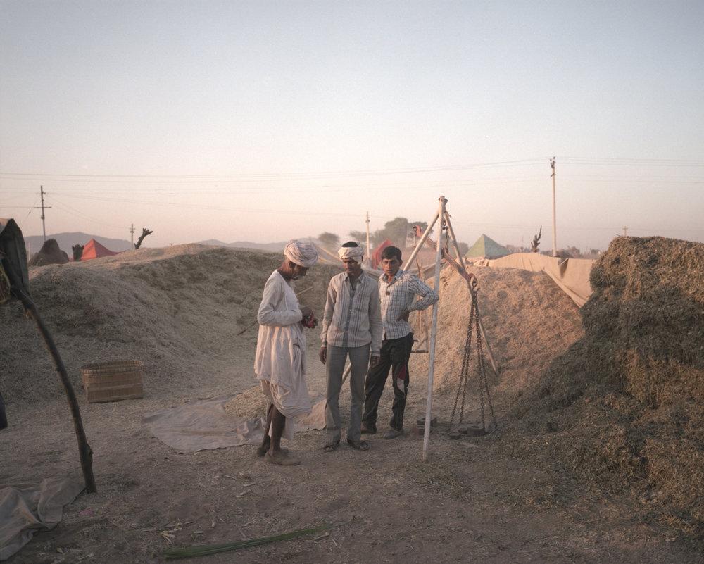 The Traders, Pushkar 2016