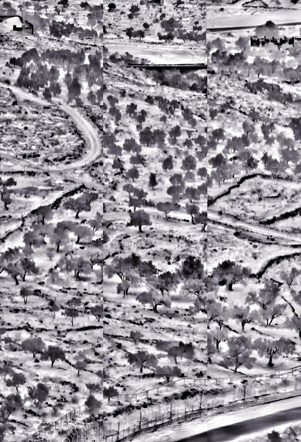 West Bank,الضفة الغربية,הגדה המערבית
