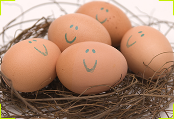 free_eggs_lead-ashx.jpg