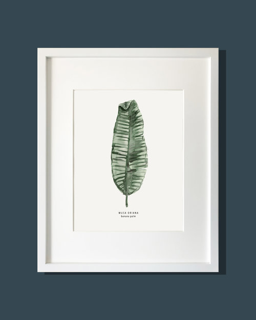 banana leaf art print cait courneya