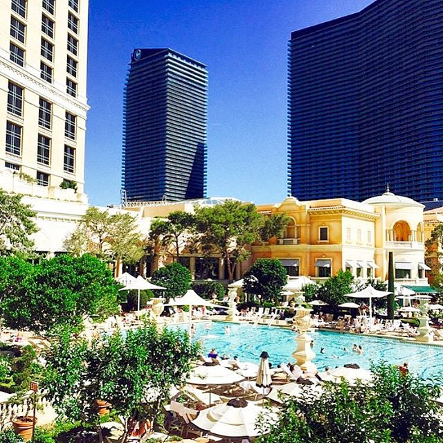 Over 70,000 competitive rates when you reserve your suites & rooms to choose with us! _____________________________________________  Reserve your stay at the Bellagio Vegas - tap link in our bio for your availability... _____________________________________________ #Vegas #Suitelife #Bellagio #poolside #hotel #LV #incentivetravel #PhotoOfTheDay #PoolParty #Happy #Beautiful #Like #Fun #Smile #Friends #Instadaily #corporatetravel #Instalike #Cool #Style #Sun #Instacool #Shoutout #Amazing  #luxuryretreat #LuxuryTravel #LivingTheDream #TrulyVisit #BusinessAsUsual 🎉