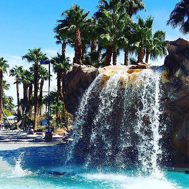 A great place to chill by pool - they've got waterfalls! _____________________________________________  How many of you are in Vegas - speak to us for rooms, reserve today!... _____________________________________________ #Vegas #RioLasVegas #VoodooBeach #PoolParty #Hotel #incentivetravel #PhotoOfTheDay #Restaurant #Happy #Beautiful #Like #Party #Smile #Friends #Instadaily #corporatetravel #Instalike #Cool #Style #Sun #Instacool #Shoutout #Amazing  #luxuryretreat #LuxuryTravel #LivingTheDream #TrulyVisit #BusinessAsUsual 🎉