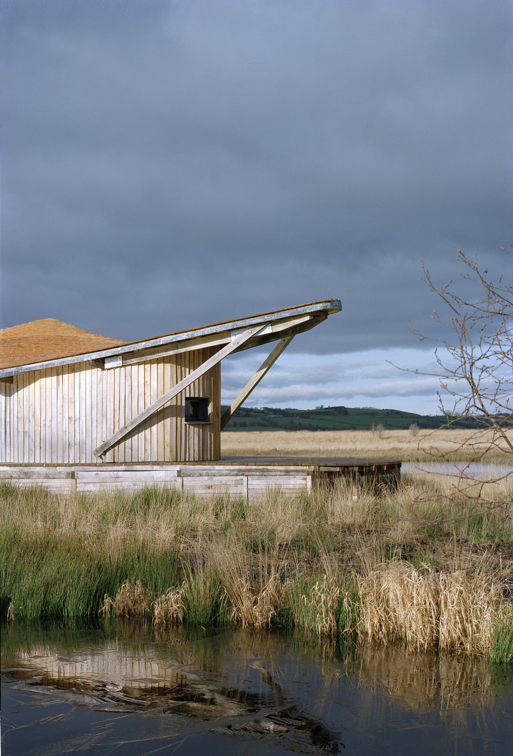 cors caron bird hide 11.jpg