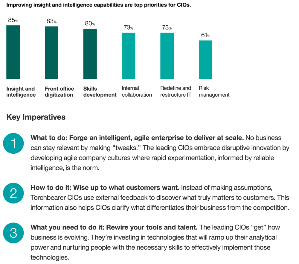IBM CEO CIO survey about competitive intelligence with digitalization and skills development