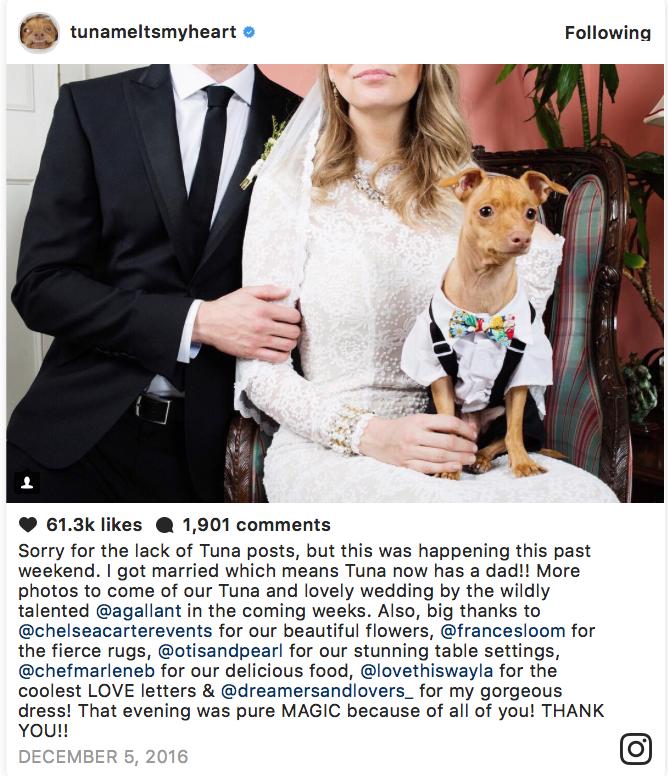 Tuna Melts My Heart Wedding I Photo by Amanda Gallant I Cosmopolitan