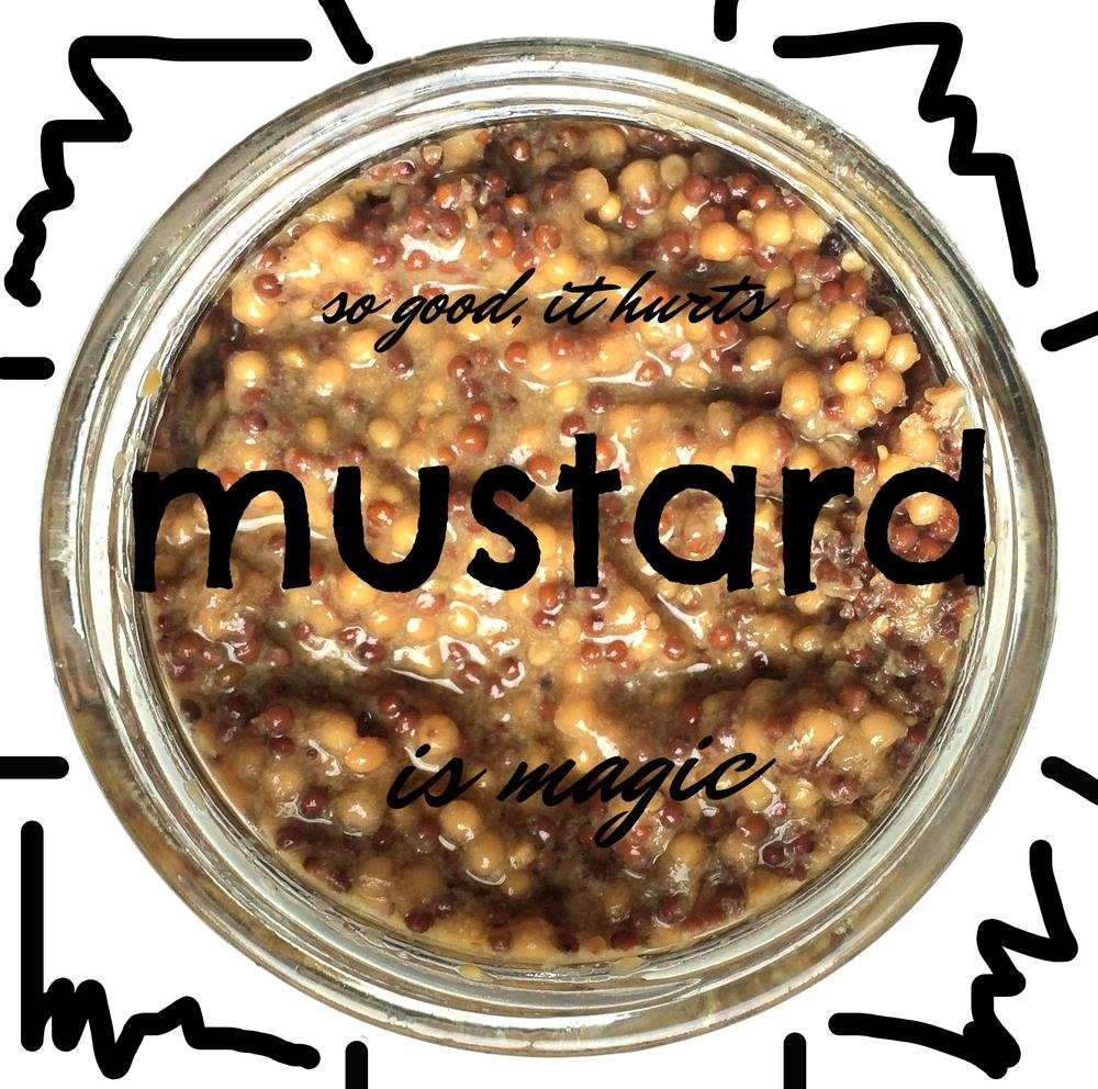 Beer_Mustard-overhead.jpg