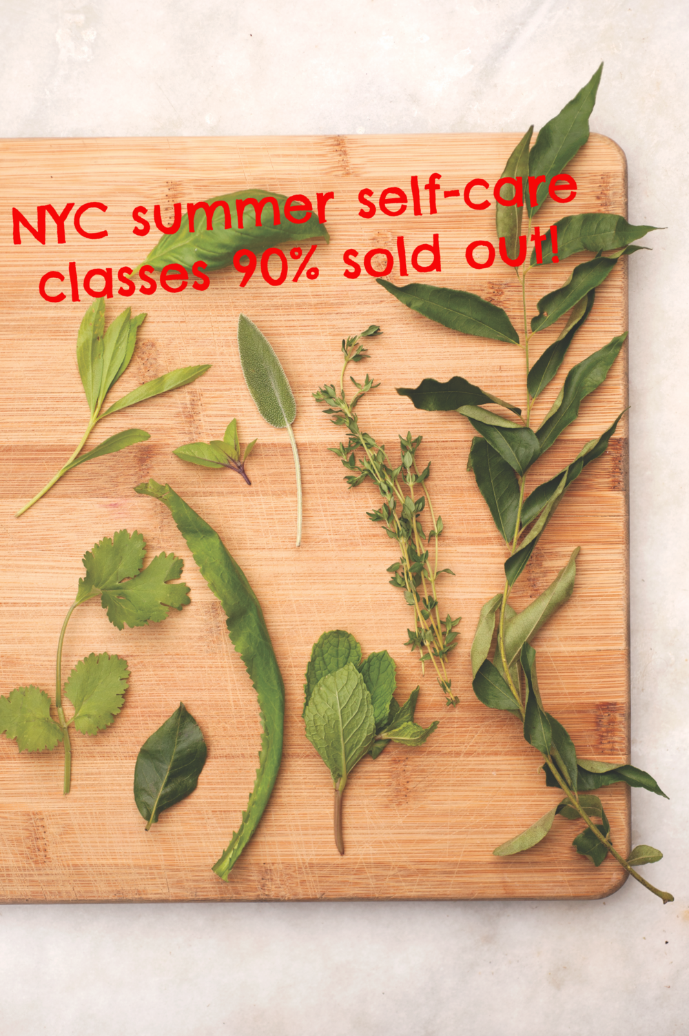 CLASSES - TAKE A CLASS OR WORKSHOP!Self Care, fermented foods, jam, pickles...