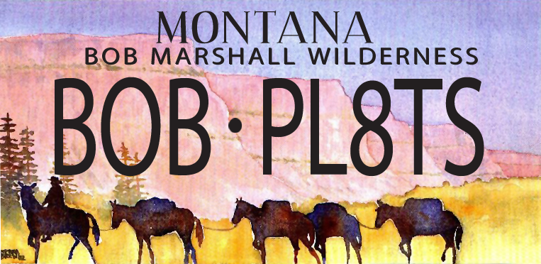Got a vehicle?  Show your love for The Bob by choosing the Bob Marshall Wilderness licence plates! A portion of your registration fee goes to support wilderness stewardship and conservation