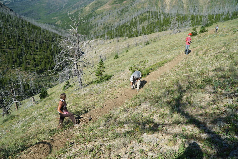 bob-marshall-wilderness-foundation-trailwork