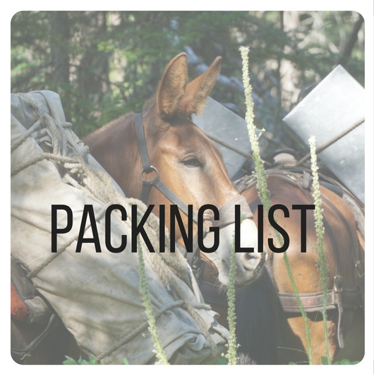 Copy of Copy of packing list