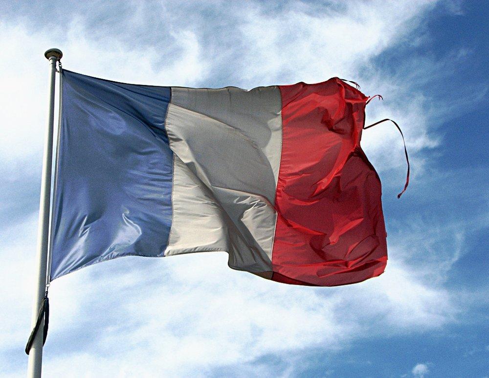 La Francia torna al voto per il secondo turno, il quale non dovrebbe essere altro che una passeggiata trionfale per il Presidente Emmanuel Macron. Foto:fdecomiteLinceza: CC 2,0