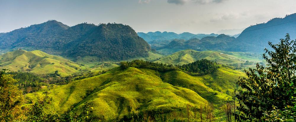 Coffee Origins: Guatemala.