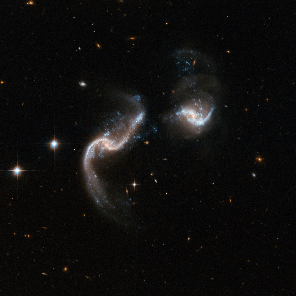 Arp 256 is a stunning system of two spiral galaxies in an early stage of merging. The Hubble image displays two galaxies with strongly disrupted shapes and an astonishing number of blue knots of star formation that look like exploding fireworks. The galaxy to the left has two extended ribbon-like tails of gas, dust and stars. The system is a luminous infrared system radiating more than a hundred billion times the luminosity of our Sun. Image Credit: NASA, ESA, the Hubble Heritage (STScI/AURA)-ESA/Hubble Collaboration, A. Evans (University of Virginia, Charlottesville/NRAO/Stony Brook University), and G. Ostlin (Stockholm University)