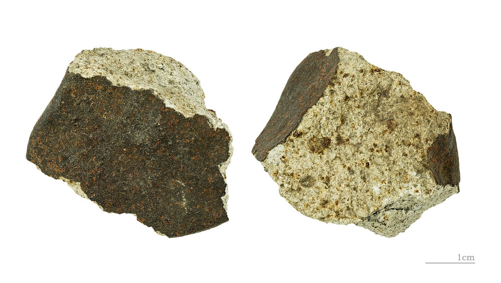 Two views of a rocky meteorite which fell at Phnom Penh in 1868. The dark surface of the meteorite is the fusion crust. Image credit: Didier Descouens, CC BY SA 4.0.