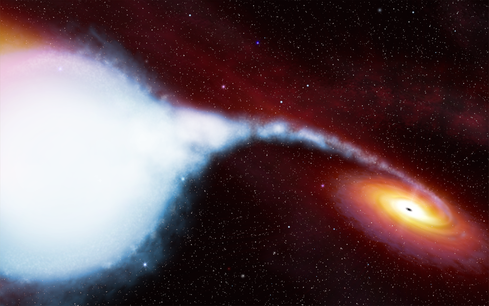Pictured above is an artistic impression of the Cygnus X-1 binary star system. It contains one of the best candidates for a black hole. Image credit:  ESA, Hubble