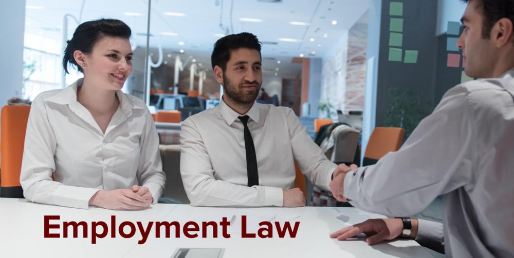 ScherrServices-Employment COLOR.png