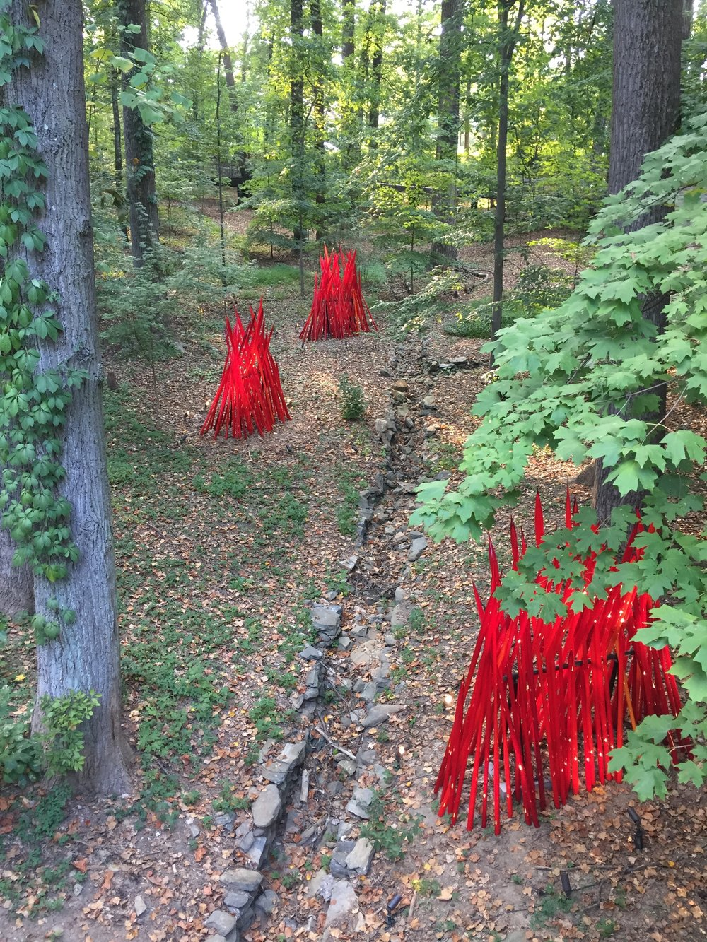Chihuly's Red Reeds, 2014