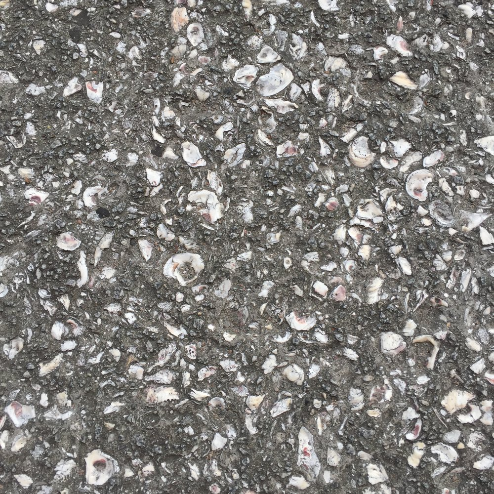 The pavement along the river is made of shells.