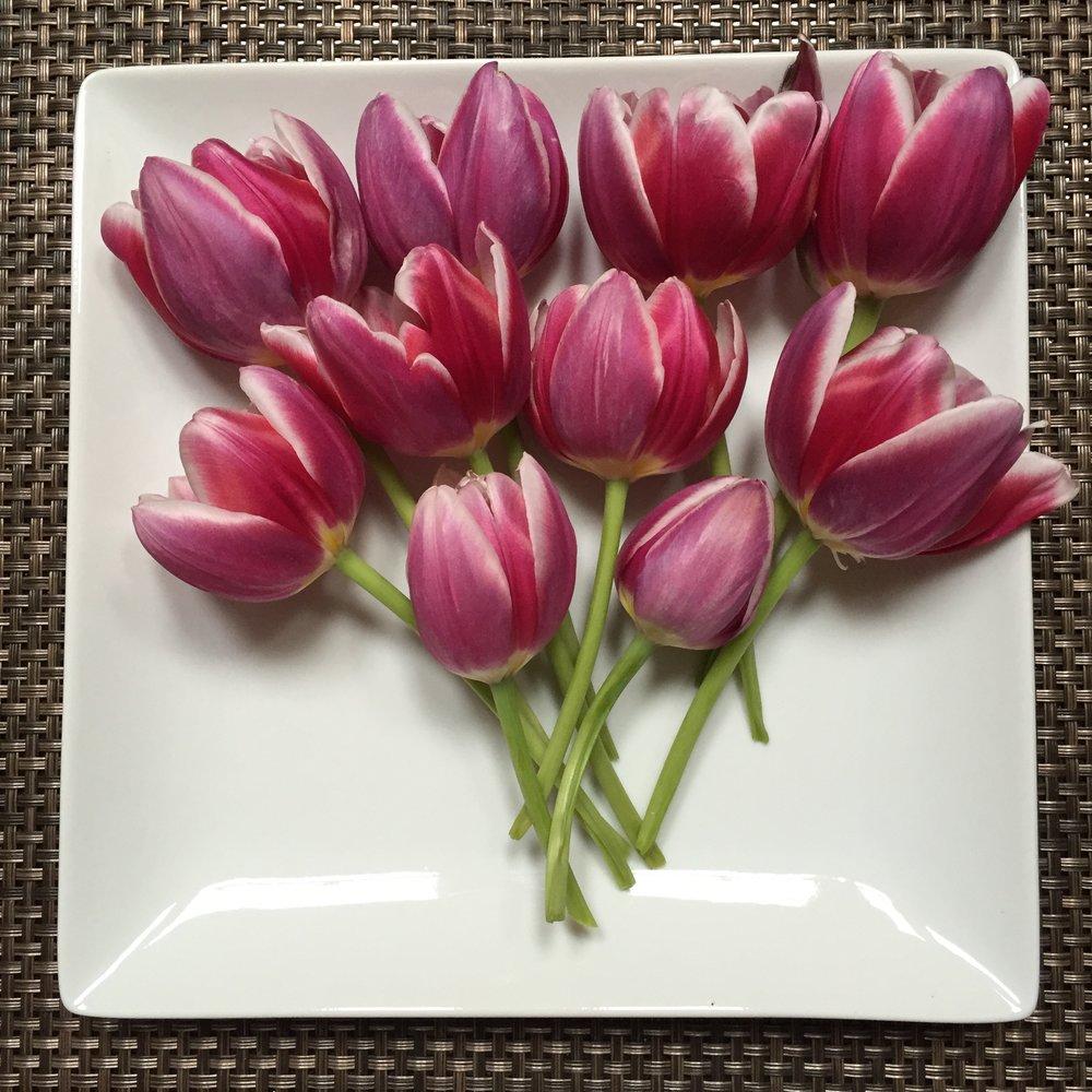 tulips-white-plate.jpg