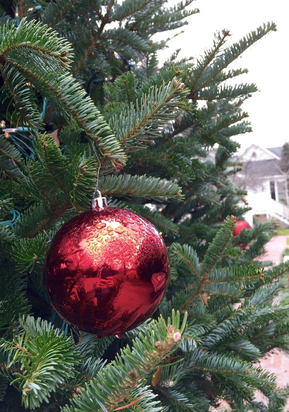 rain-ornament.jpg