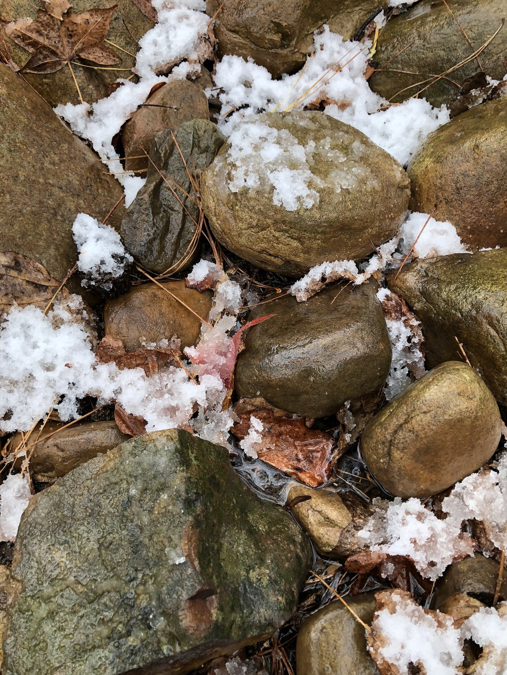 Dry creek bed wet with snow.