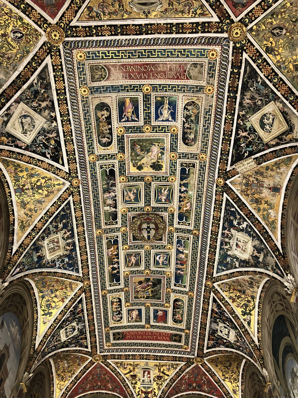 Ceiling of the Piccolomini Library, located inside the Cathedral