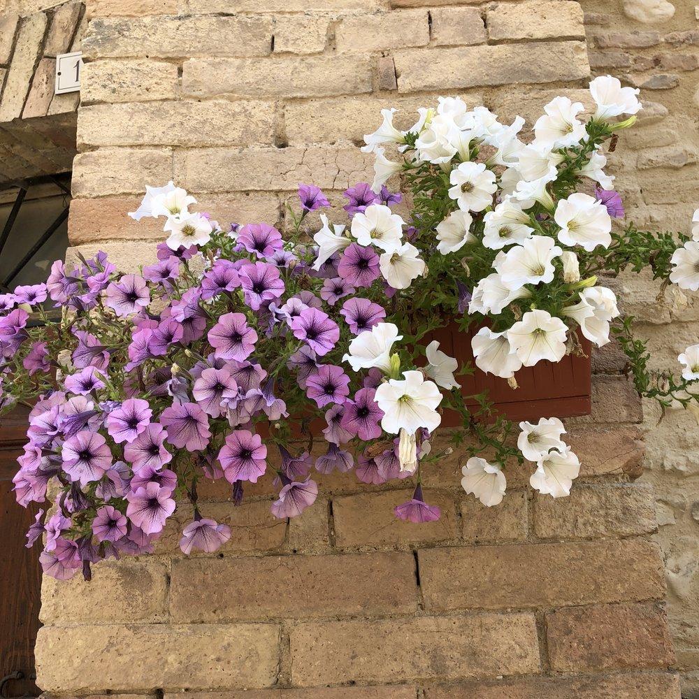 Glimsen-flowers-stone.jpg