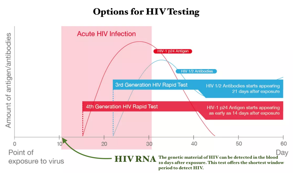 Testing for HIV infection can measure HIV RNA, HIV p24 and/or HIV antibodies. These markers become positive at different intervals following infection with HIV. HIV RNA can be detected after 10 days, whereas antibodies against the virus take 21 days or longer. Graphic adapted from afa.org