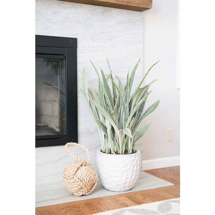 fireplace-beach-details.png