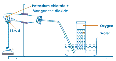 http://letslearnnepal.com/class-11/chemistry/inorganic-chemistry/oxygen/laboratory-preparation-of-oxygen/