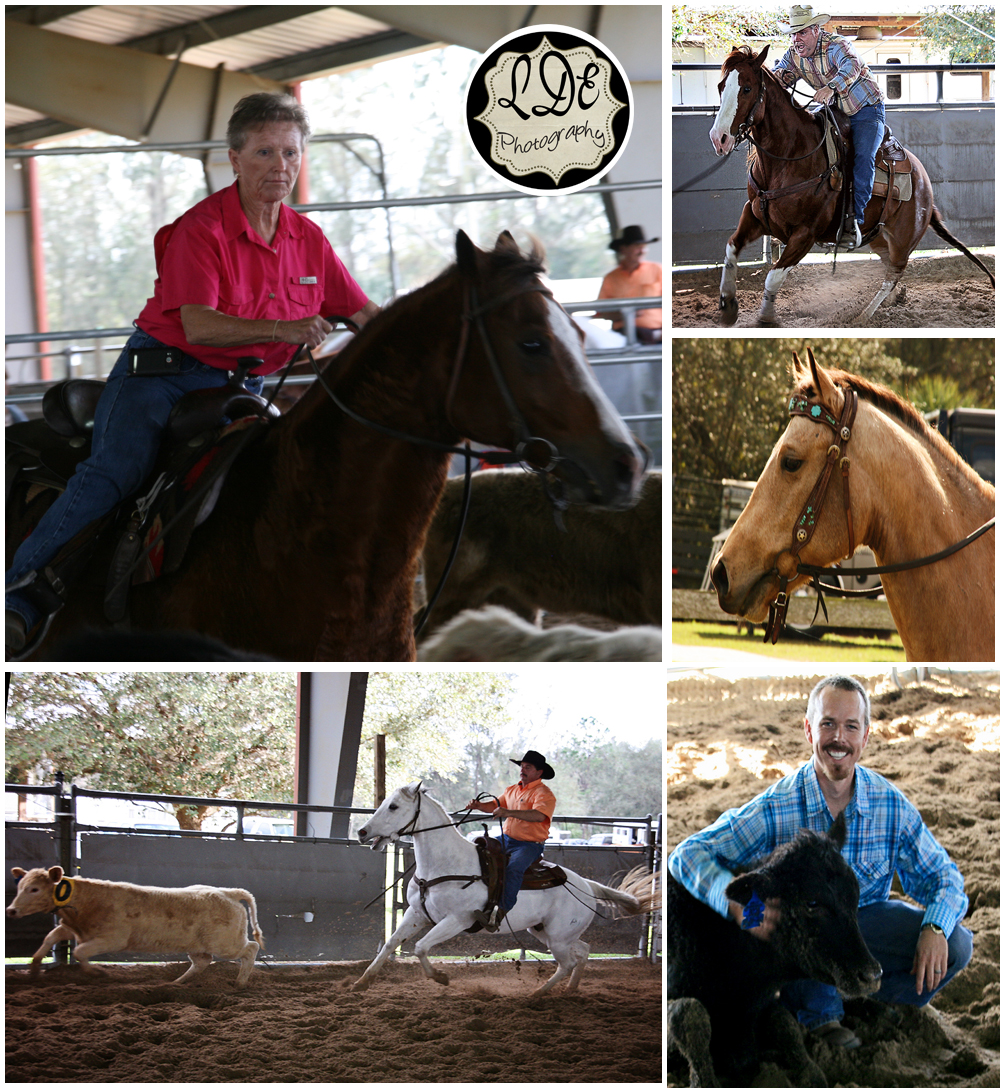 Ranch Sorting Collage