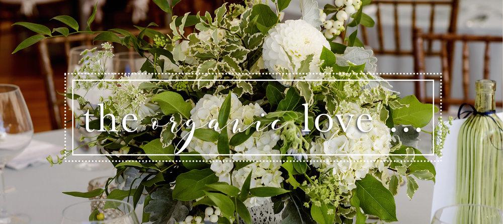 Organic Wedding | Thumbnail.jpg