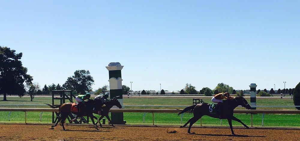 Trackside at Keeneland's Fall Meet