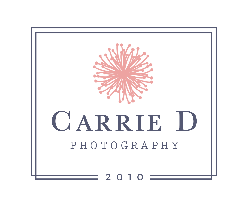 Carrie D Photography