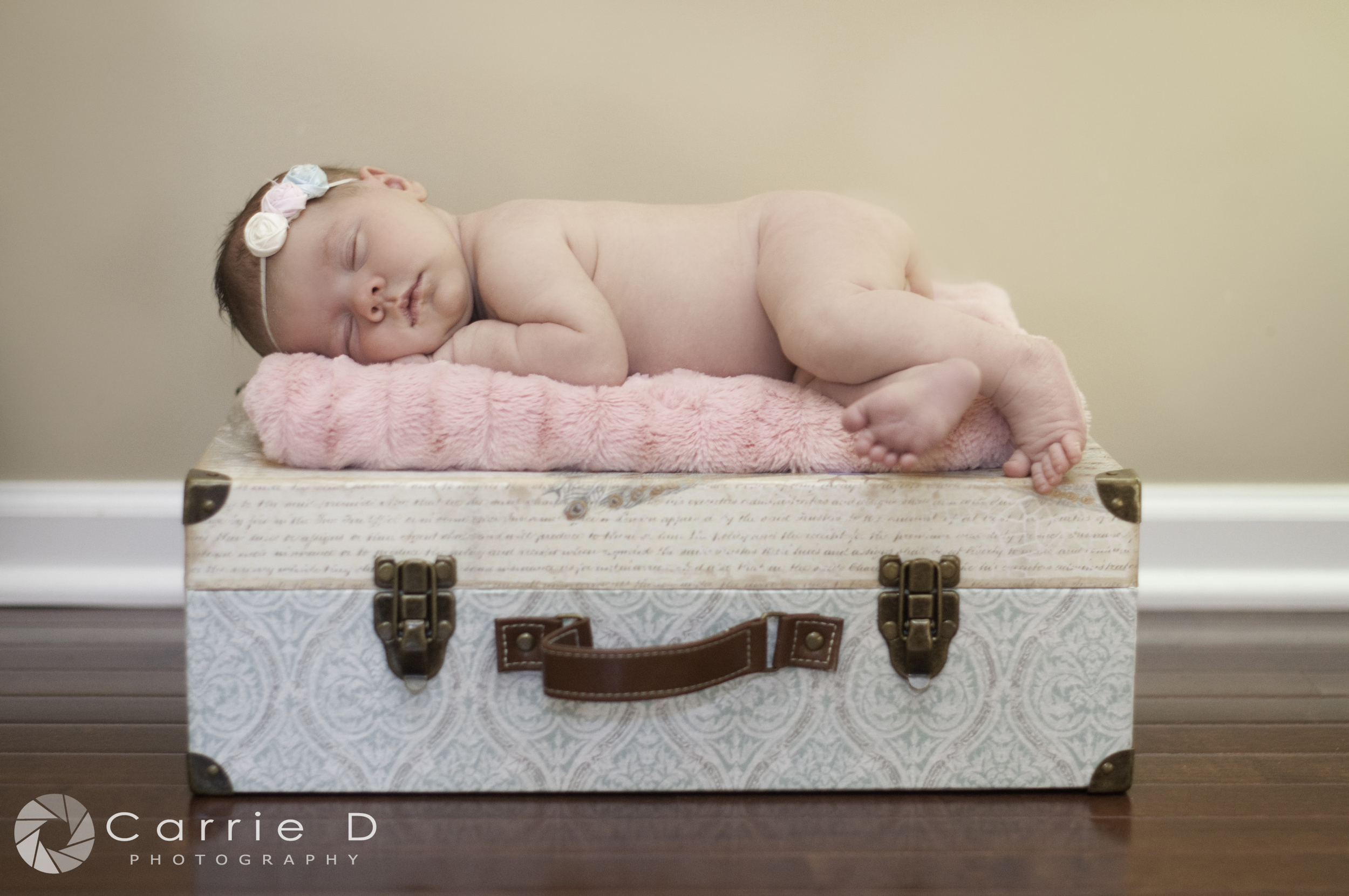 Northern VIrginia Newborn Photographer, Northern VIrginia Family Photographer, Northern Virginia Natural Light Photographer, Newborn Posing, Natural Light Photography