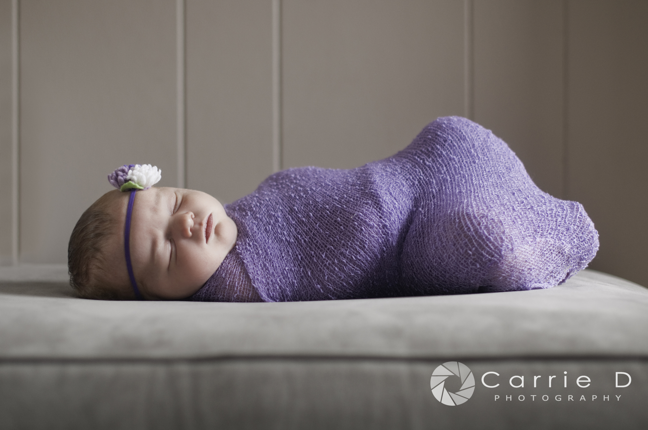 Manchester Newborn Photographer - Manchester Family Photographer - Manchester Child Photographer - Natural Light Newborn Photography - Maryland Natural Light Newborn Photographer - Natural Light Photography