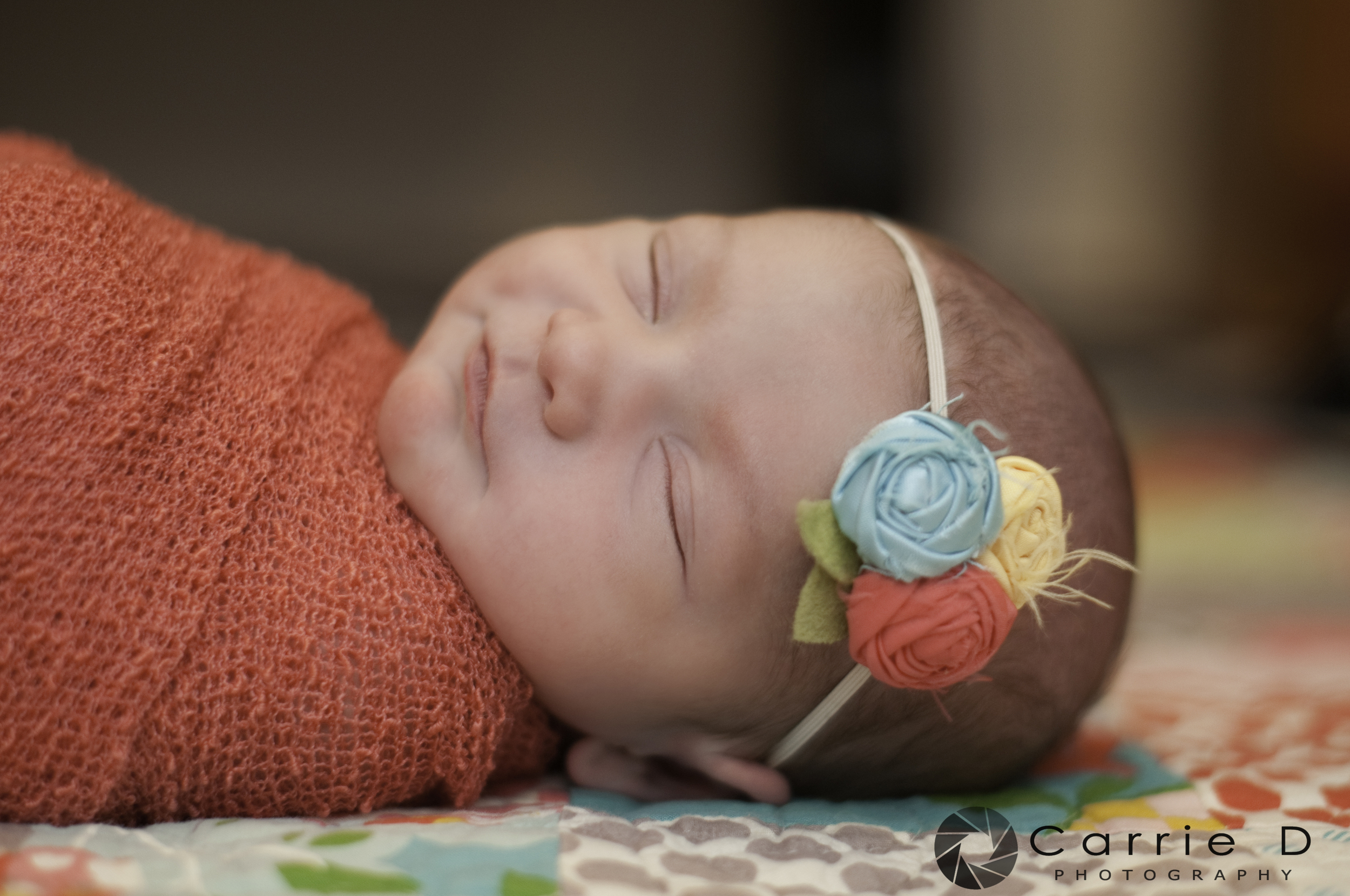 Annapolis Newborn Photographer - Annapolis Natural Light Photographer - Natural Light Newborn Photography - Natural Light Photographer - Maryland Newborn Photographer - Newborn Photography - Baby in Crab Pot - Annapolis Natural Light Newborn Photographer - Annapolis Family Photographer
