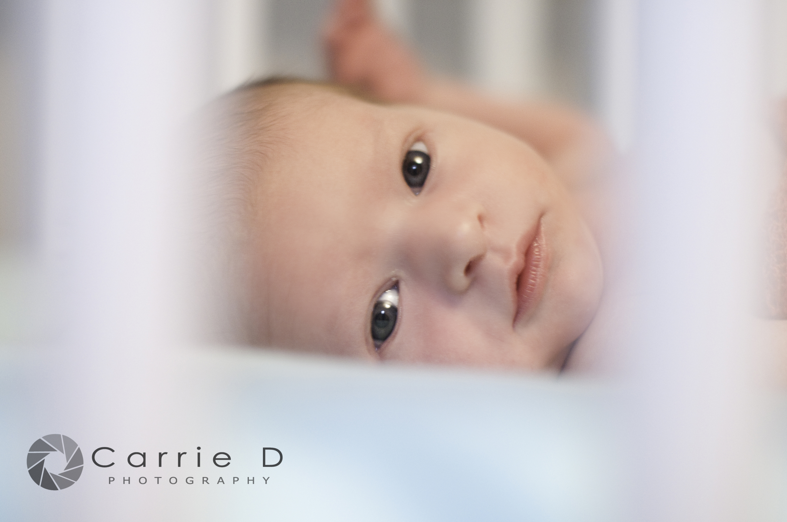 Harford County Newborn Photographer - Harford County Maryland Newborn Photographer - Harford County Natural Light Newborn Photographer - Harford County Maryland Natural Light Newborn Photographer - Maryland Newborn Photographer - Maryland Natural Light Photographer - Natural Light Newborn Photography - Newborn Poses - Newborn Photographer