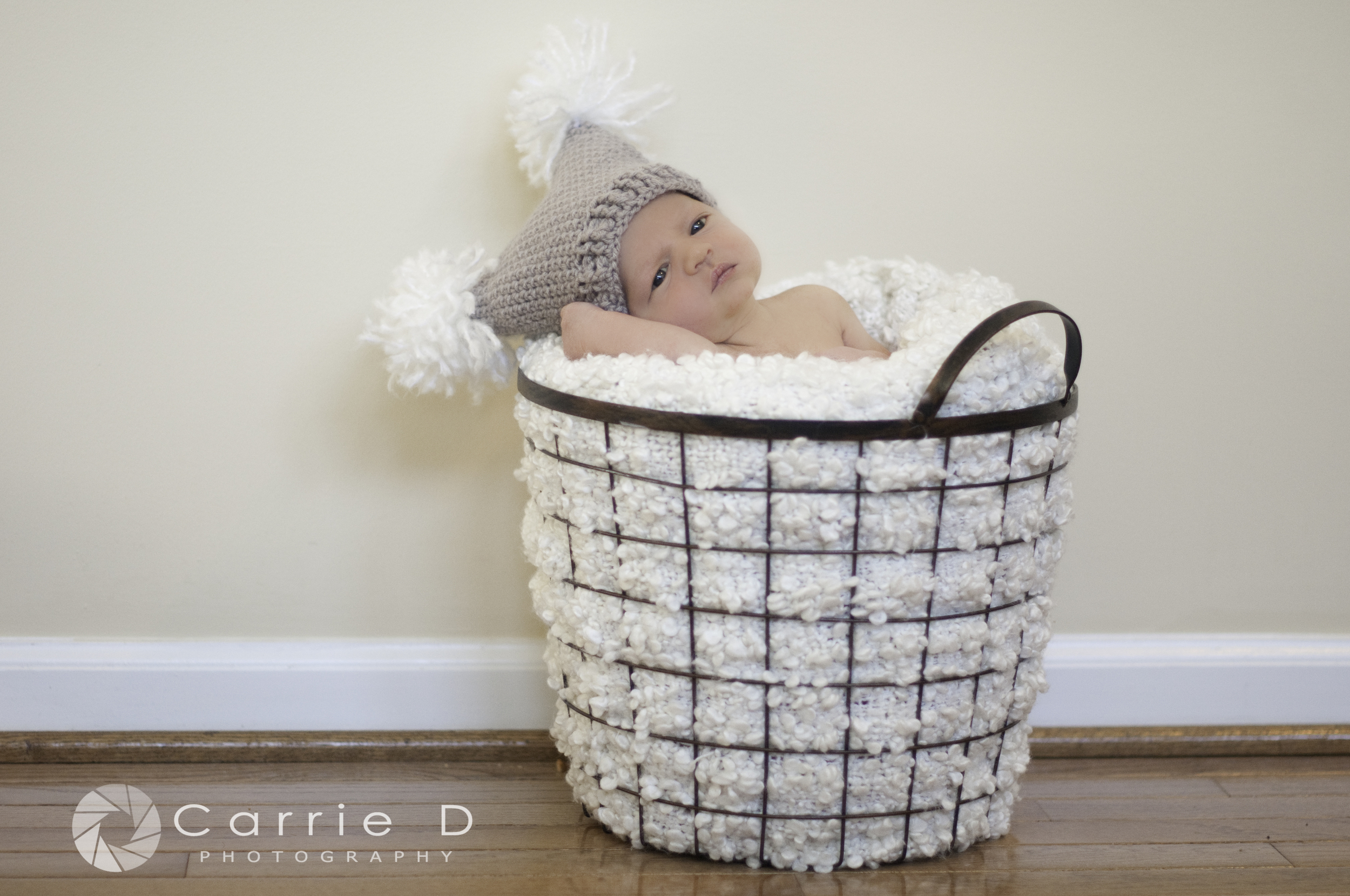 Harford County Newborn Photographer - Harford County Family Photographer - Harford County Natural Light Newborn Photographer - Natural Light Newborn Photography - Harford County Natural Light Family Photography - Newborn Posing - Sibling Photographer - Brothers
