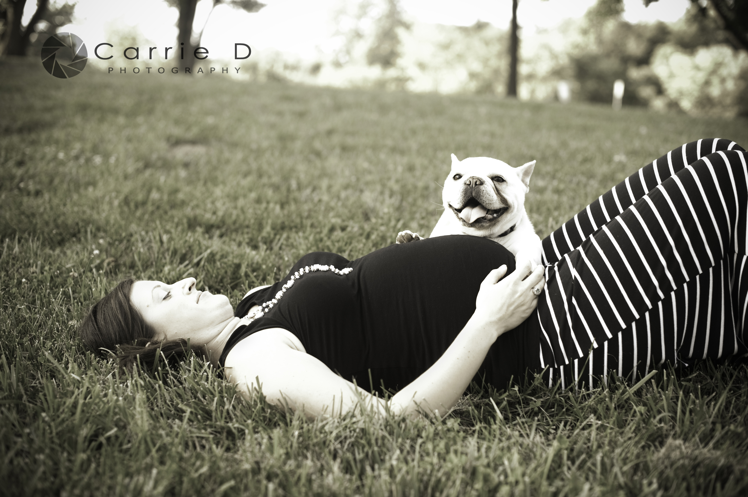 Westminster Photographer - Westminster MD Photographer - Westminster Maternity Photographer - Westminster MD Maternity Photographer - Westminster Natural Light Photographer - Westminster MD Natural Light Photographer - Westminster Family Photographer - Westminster MD Family Photographer - Westminster Pet Photographer - Westminster MD Pet Photographer