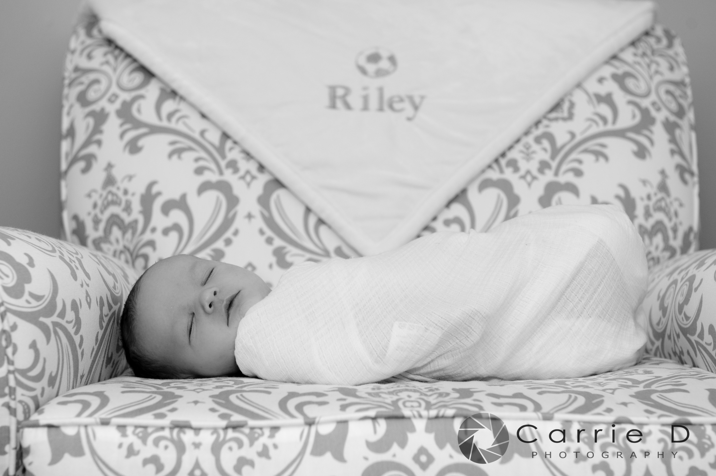 Wilmington DE Photographer – Wilmington DE Portrait Photographer – Wilmington DE Family Photographer - Wilmington DE Newborn Photographer – Wilmington DE Infant Photographer – Wilmington DE Sibling Photographer – Wilmington DE Natural Light Photographer – Wilmington DE Lifestyle Photographer – Wilmington DE Natural Light Portrait